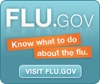 flu-dot-gov.jpg