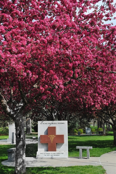 Spring blooming trees give additional color to the garden